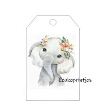 Dier olifant